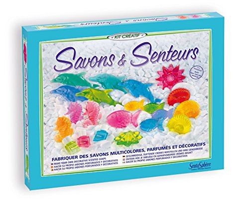 Distrifun (Sento)–Craft–The Secrets of Making Soap