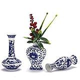 Nother Juego de jarrones de porcelana de color azul y blanco, juego de 3 jarrones de cermica pequeos para sala de estar, decoracin del hogar, jarrones chinos (porcelana azul y blanca)
