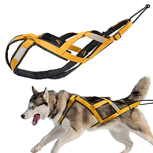 PET ARTIST Arnés ajustable para perro – Arnés reflectante para perros grandes – X Back Slled Pro Arnés para tirar de pesas, ciclismo, esquí, canicross, scootering, skateboard, M