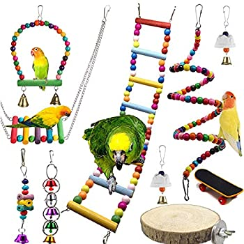 Chikanb Lot de 10 Jouet d'Oiseaux en Bois, Coloré Jouets à mâcher, ouets pour Oiseaux à Suspendre avec Clochette, échelle en Bois pour Perruches Perroquets Oiseaux Aras Conure Callopsite