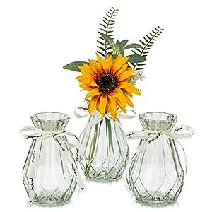 Flower Vases Glass with Twine Rope 3 Pcs/Set Floral Arrangements Artificial with Vase Unique Shapes Creative for Wedding, Home, Garden Decoration