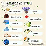 7 BEST Personalized Air Freshener