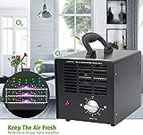 Ozonizador,Generador De Ozono Esterilizador Industrial...