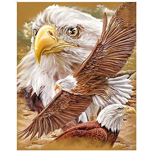 ArmanII diamantschilderset, diamantschilderijen, volledige ronde borstels, embroidery schilderijen voor thuiswanddecoratie Eagle 11,8 x 15,7 in 1 verpakking