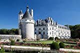 Puzzles para Adultos y niños 1000 Piezas, Francia Ciudades Chateau de Chenonceau,29.5'x19.7'
