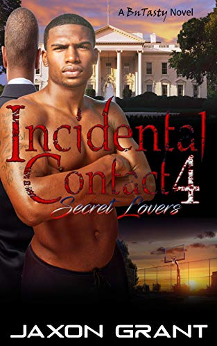 Incidental Contact 4: Secret Lovers (English Edition)
