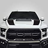 Factory Crafts Hood Racing Stripe Graphics kit 3M Vinyl Decal Wrap Compatible with Ford F-150 Raptor 2017-2019 - Matte Black