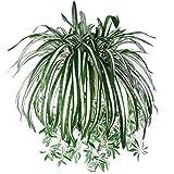Aisamco 3 Piezas Plantas Colgantes Artificiales Guirnalda Artificial Falsa Verde para el hogar Pared Jardín Boda Decoración Colgante Exterior