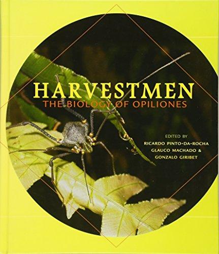 Pinto-Da-Rocha, R: Harvestmen - The Biology of Opiliones