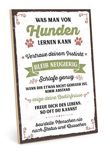 TypeStoff Holzschild mit Spruch – was Man VON Hunden Lernen KANN – im Vintage-Look mit Zitat als Geschenk und Dekoration (Größe: 19,5 x 28,2 cm)