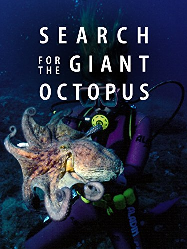 Search for the Giant Octopus
