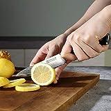 PAUDIN Damast Messer Allzweckmesser 13cm - scharfe Japanisches AU10 Küchenmesser mit ergonomischem Micarta-Griff - 5