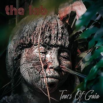 Tears of Gaia (feat. Jochen Schrumpf)