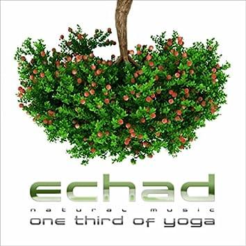 One Third of Yoga