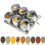 Acero Inoxidable Spice Jar magnética, Especias magnética Tarro Contenedor con Tapa Shaker, Cocina para Guardar Objetos Jar Set, con Ventana Transparente, Pimienta y Hierbas,B