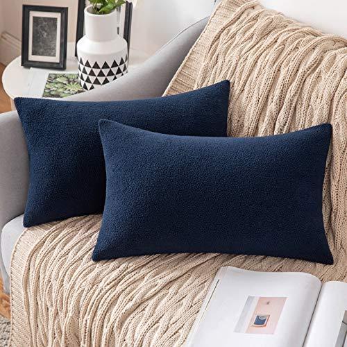 MIULEE 2 Unidades Fundas de cojín para sofá Almohada Caso de Diseño Compuesto de Polar Fleece Cómodo Decoración para Habitacion Juvenil Sofá Comedor Cama Dormitorio Oficina 30 x 50cm Azúl pupú