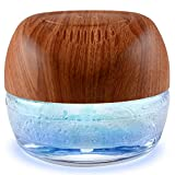 ap airpleasure Purifier Air Washer, Air Fresher Aroma Diffuser Odor for Smokers,...