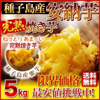 ホロニックフーズ 種子島産プレミア蜜芋使用 完熟安納芋焼き芋5kg