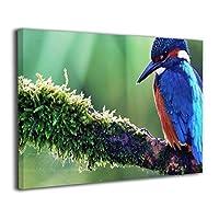Skydoor J パネル ポスターフレーム 動物鳥カワセミ自然野生動物 インテリア アートフレーム 額 モダン 壁掛けポスタ アート 壁アート 壁掛け絵画 装飾画 かべ飾り 30×20
