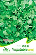 Each Pack 200+ Seeds Heirloom Healthy Organic Vegetable Chinese Cabbage Pakchoi Seeds