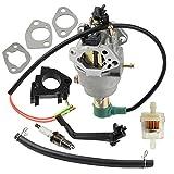 Panari Carburetor + Insulator for 40023 40030...