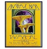 Grateful Dead Poster - 8x10 Psychedelic Magic Mushrooms - Grateful Dead Gifts - Concert Posters - Hallucinogenic Golden Teacher - Dead Head Wall Art - Pshycadellic Room Decor - Teen, Dorm Room Decor