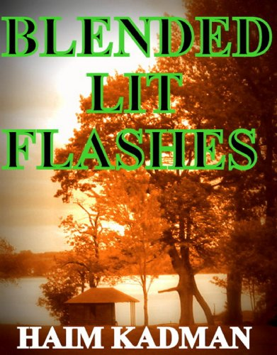 Blended lit flashes: A literature collection (English Edition)