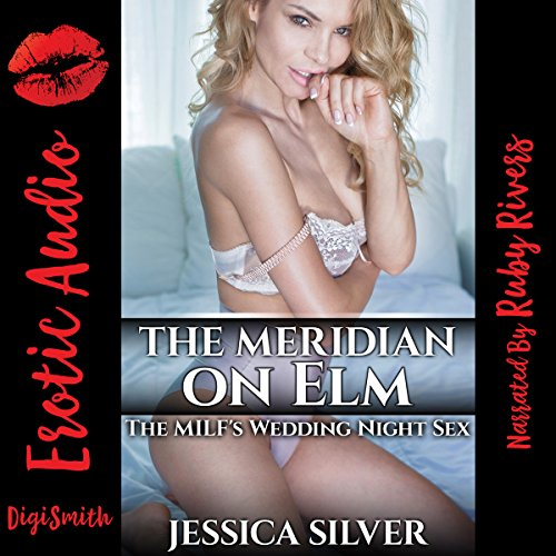 The Meridian on Elm audiobook cover art