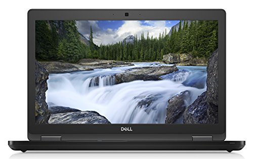 Dell Display: 39,6 cm (15,6 Zoll)