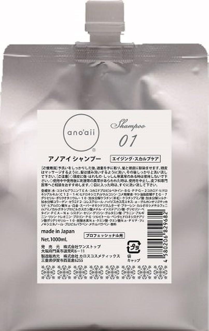 タクシーラインナップ召集するanoaii (アノアイ) エイジングスカルプシャンプー 1000ml レフィル