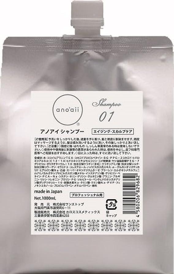 払い戻しからに変化する内部anoaii (アノアイ) エイジングスカルプシャンプー 1000ml レフィル
