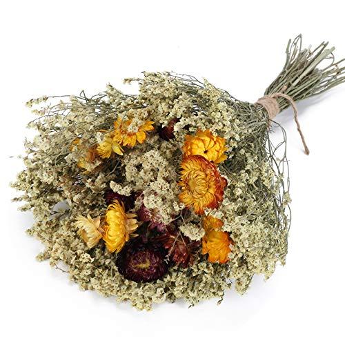 XHXSTORE Ramo de Flores Naturales Margaritas y Flores Secas Gypsophile para Decoración Jarrone Ramo de Novia Arreglo Floral para fFiestas