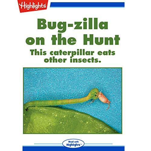 Bug-zilla on the Hunt copertina