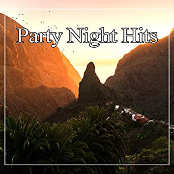 Party Night Hits - Chillout Hits for Party, Summer Vibes, Deep Bounce, Ibiza Beach Party Night, Lounge Summer