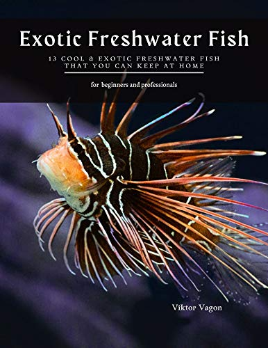 Exotic Freshwater Fish: 13 Cool & Exotic Freshwater Fish That You Can Keep at Home (English Edition)