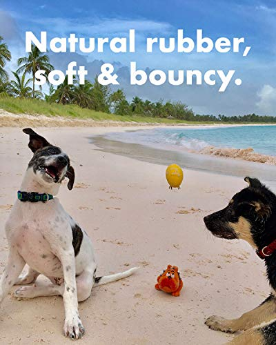 """Set of 4 Eggs - Squeaky Dog Toys - Extra Small (2.5"""") - for Puppies & Small Dogs - Bouncy - Natural Rubber - Puppy…"""