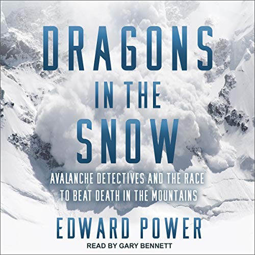 Dragons in the Snow  By  cover art