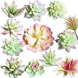 Aisamco 12 Piezas Artificiales selecciones suculentas Unpotted Faux Surtido suculento en Flocado Rosa y Blanco Faux suculento arreglo Floral Acento