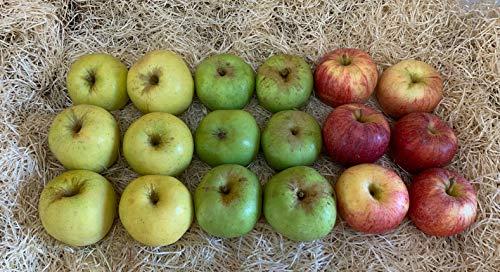 Caja Todo Manzanas 3,5 kilos - Producción propia Venta directa Producto fresco