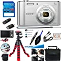 Sony Cyber-Shot DSC-W800 Digital Camera (Silver) + Deal-Expo Accessories Bundle by Deal-Expo