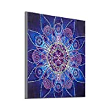 VETPW DIY 5D Diamante Pintura por Números Kit, Mandala Bricolaje Diamond Painting...