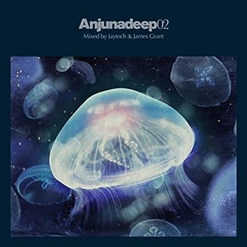 Anjunadeep 02 - Unmixed & DJ Ready (iTunes)