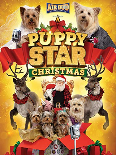 Puppy Star Christmas