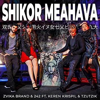 Shikor Meahava (feat. Keren Krispil & Tzutzik)
