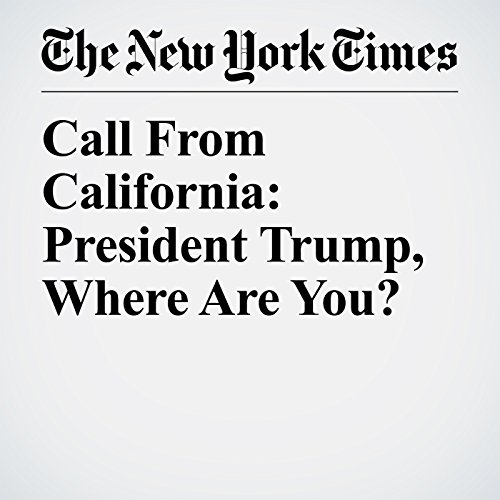 Call From California: President Trump, Where Are You? audiobook cover art