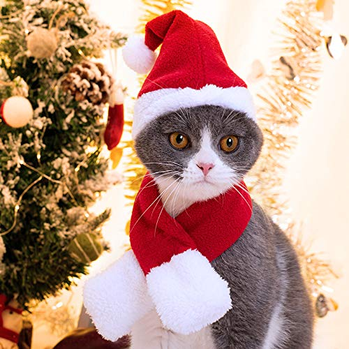 Namsan Christmas Cat Costume Cat Santa Hat with Christmas Scarf Dogs Christmas Outfits Puppy Xmas...