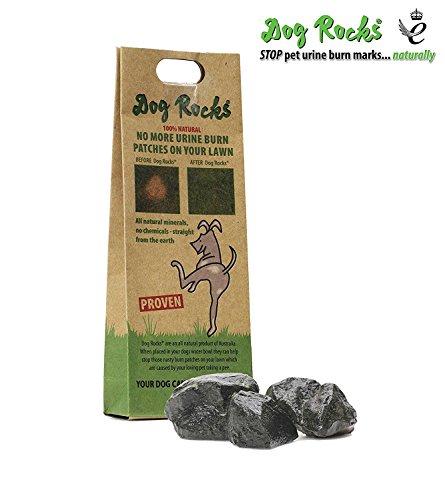 Dog Rocks Zapobiegacz łaty moczowej 200 g torba