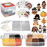 EVERYTHING YOU NEED - Includes 8,000 beads, 10 unique seasonal and Thanksgiving inspired templates, 4 pegboards, 2 tweezers, 2 sheets of ironing paper and carrying case. Templates are numbered per color for easy use 15 VIBRANT COLORS - Create a cute ...