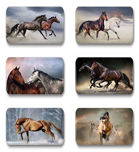 Merchandise for Fans paarden schimmel rap veulen - 6 rechthoekige koelkastmagneten 7 x 4,5 cm voor memoboard notitiebord magneetbord whiteboard Rechteck 3