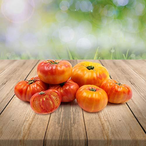 """Tomate""""Ananas"""" 25 x Samen 100% natürlich ohne chemische Anzuchthilfen oder Gentechnik aus Portugal - herrlich fruchtiger Ananas-Geschmack"""